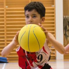 Tournoi U7-U8 du 19 mai 2019 organisé par le Veyrier Salève Basket